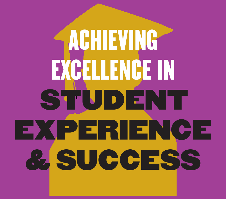 Achieving Excellence in Student Experience and Success